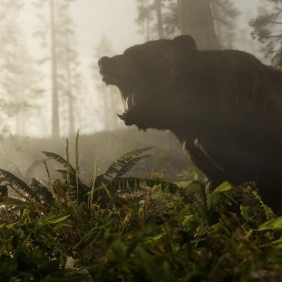 A bear in Red Dead Redemption 2